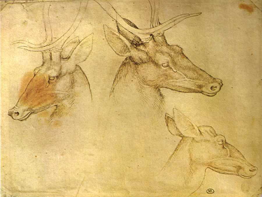 Pisanello,_disegni