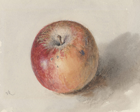 apple-ruskin